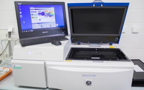 Laser Scanner Imaging System